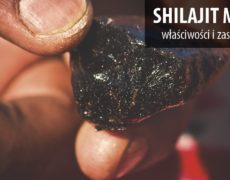 Shilajit-Resin